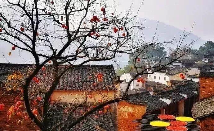 汉语教学 | 好词好句写秋天