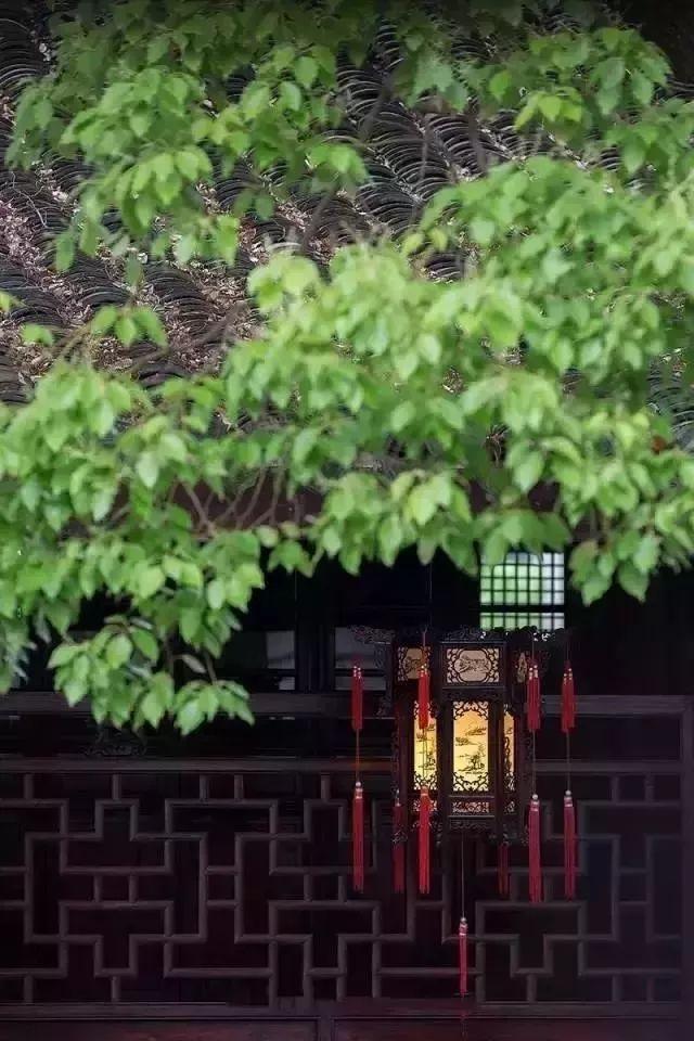 汉式文化:40句古语,道尽儒家智慧